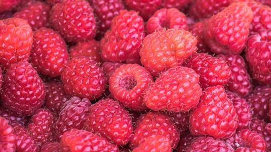 raspberries-3583005_1920 (1)